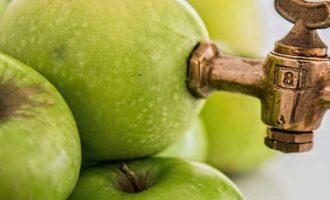 Сок из яблок на зиму из соковыжималки