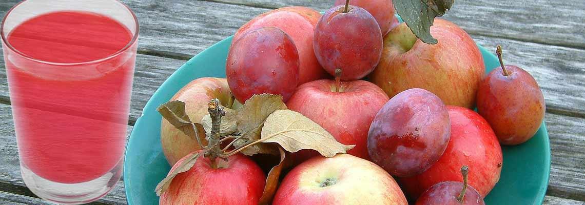 Компот из слив и яблок на зиму