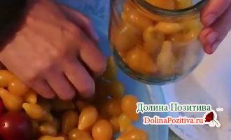 желтые помидорки для засолки