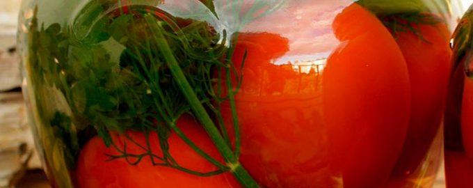 соленые помидоры в банках холодным способом