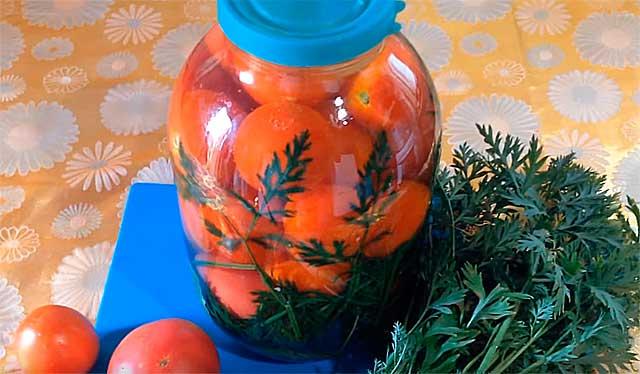 томаты с морковной ботвой