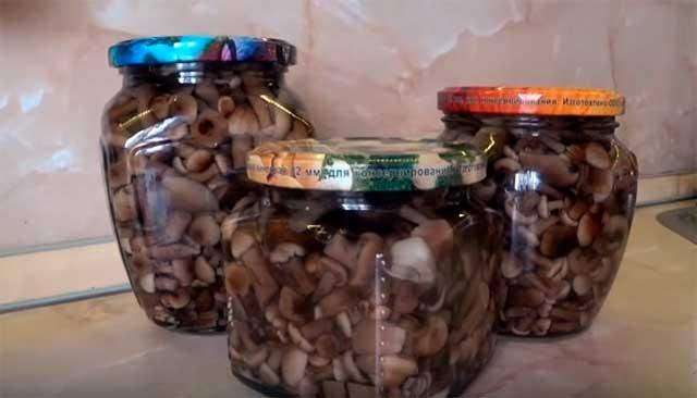 баночки с грибами