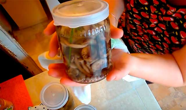 маринованные грибочки